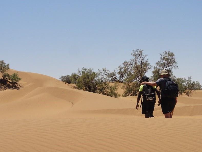 Vitagliano désert 3